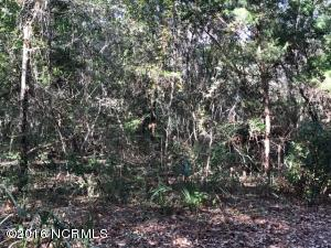 35 774 Dowitcher Trail, Bald Head Island, NC 28461