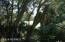 10 Dowitcher Trail, Bald Head Island, NC 28461