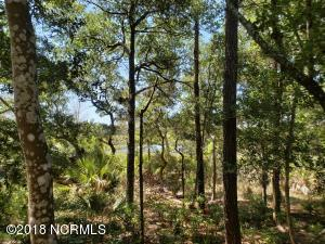 69 Farm Ridge Circle, Bald Head Island, NC 28461