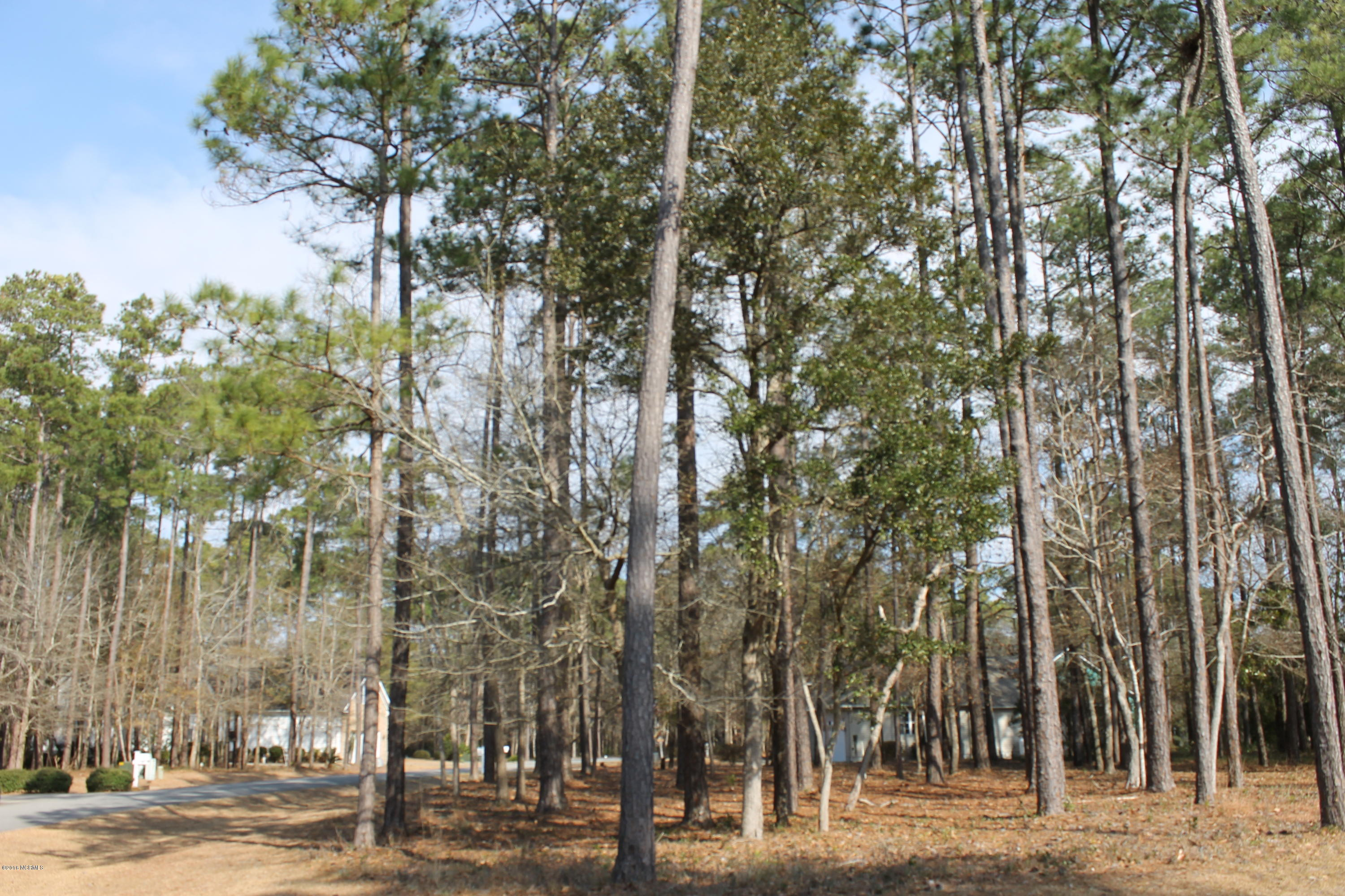 3850 Timber Stream Drive Southport, NC 28461