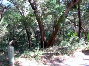 17 Fort Holmes Trail, Bald Head Island, NC 28461