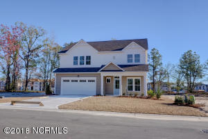 124 Violetear Ridge, Lot #48, Hampstead, NC 28443