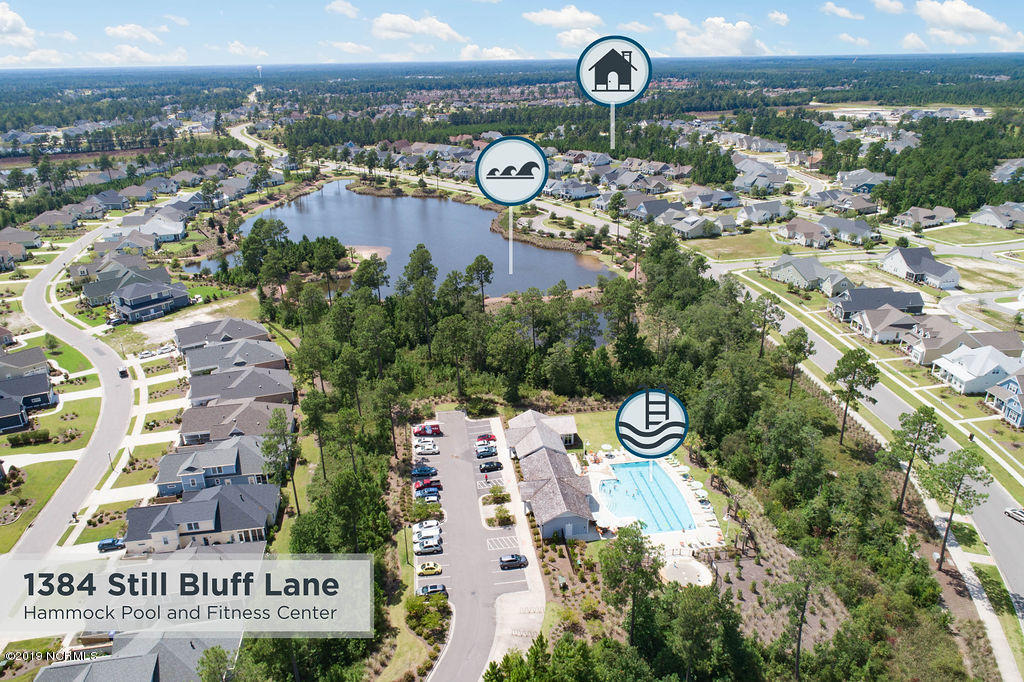 1384 Still Bluff Lane Leland, NC 28451