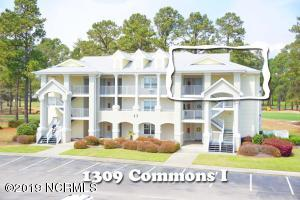 1309 Commons I