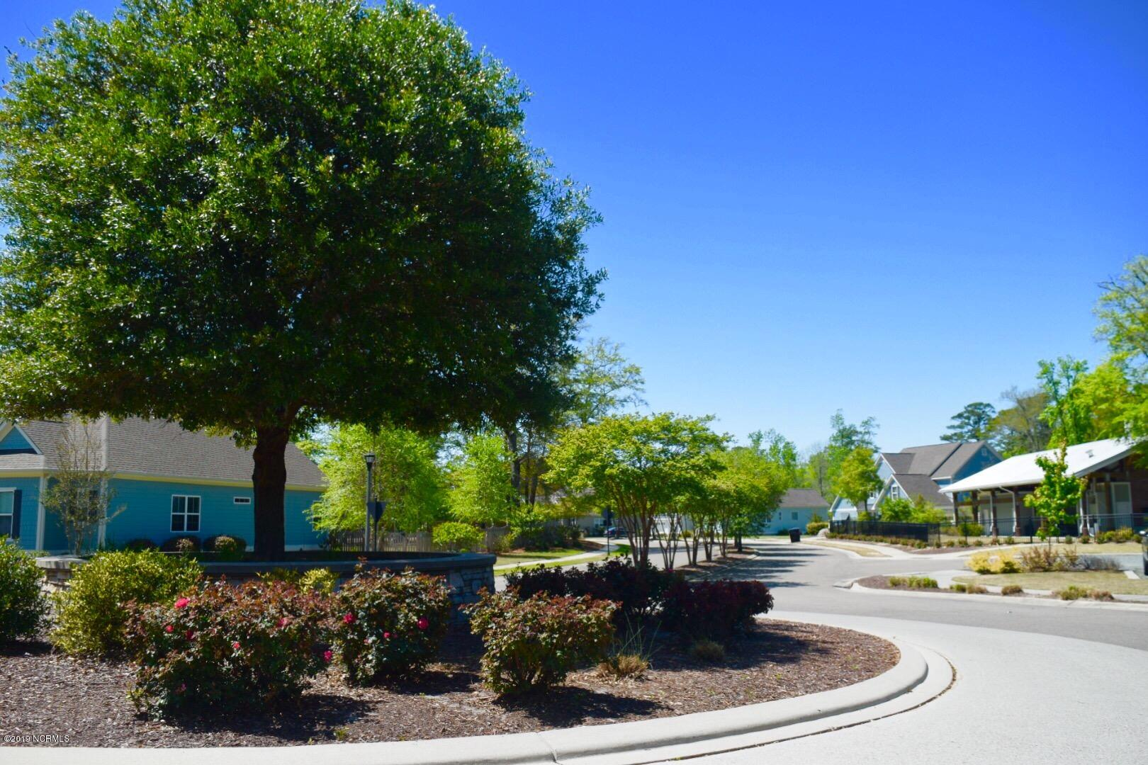 1109 Baldwin Park Drive Wilmington, NC 28411