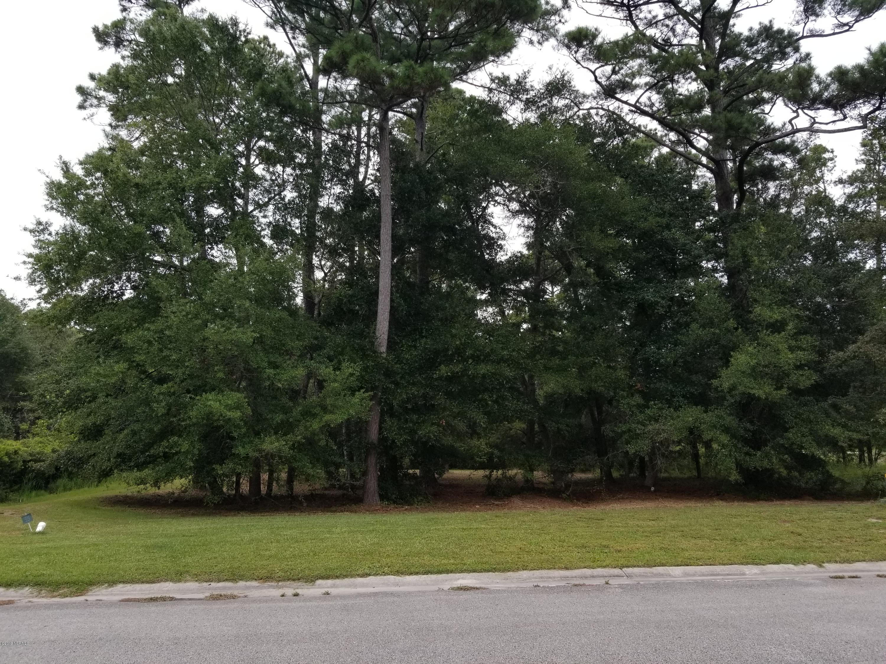 Lot 35 Hollow Tree Drive Southport, NC 28461
