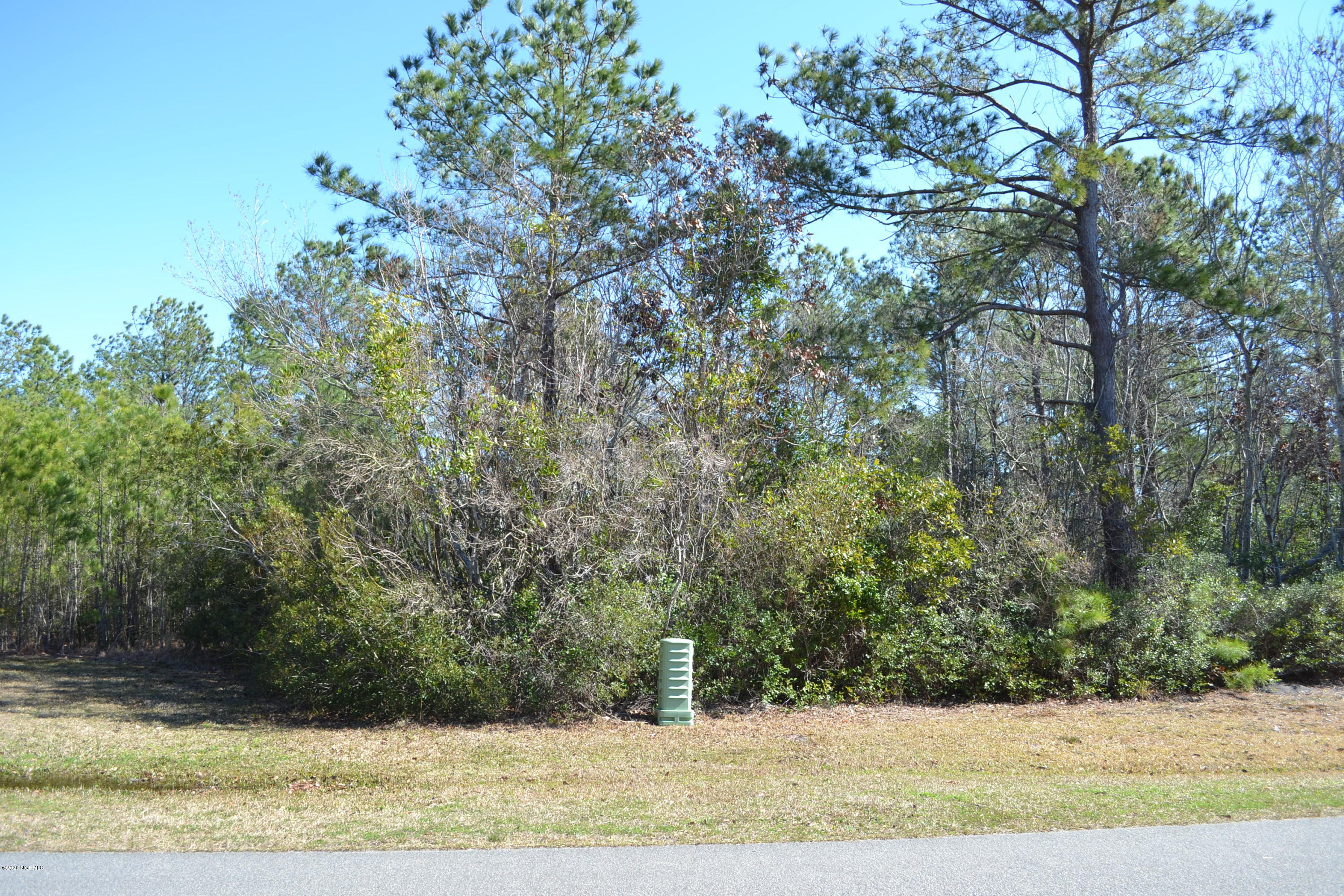 Come build your dream home on this beautiful half acre lot, located in the desirable neighborhood of Mimosa Bay. Mimosa Bay is a waterfront community and is only a short drive to North Topsail Beach. HOA the community boat launch and dock, clubhouse, pool, tennis court and much more.