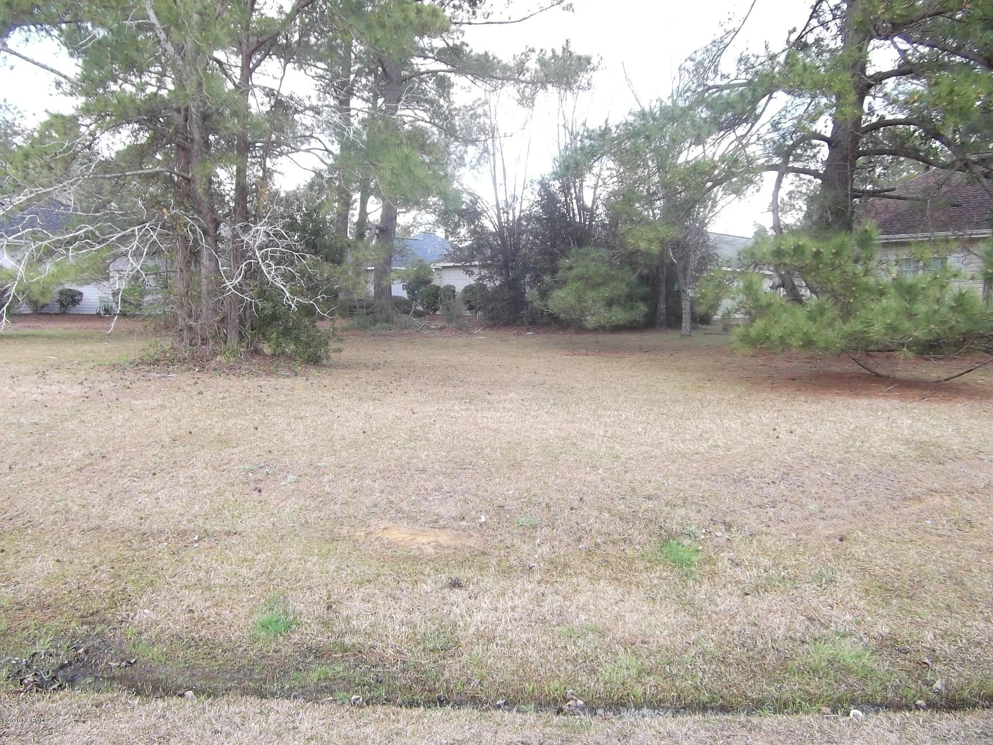 Brunswick Plantation & Golf Resort - MLS Number: 100207518