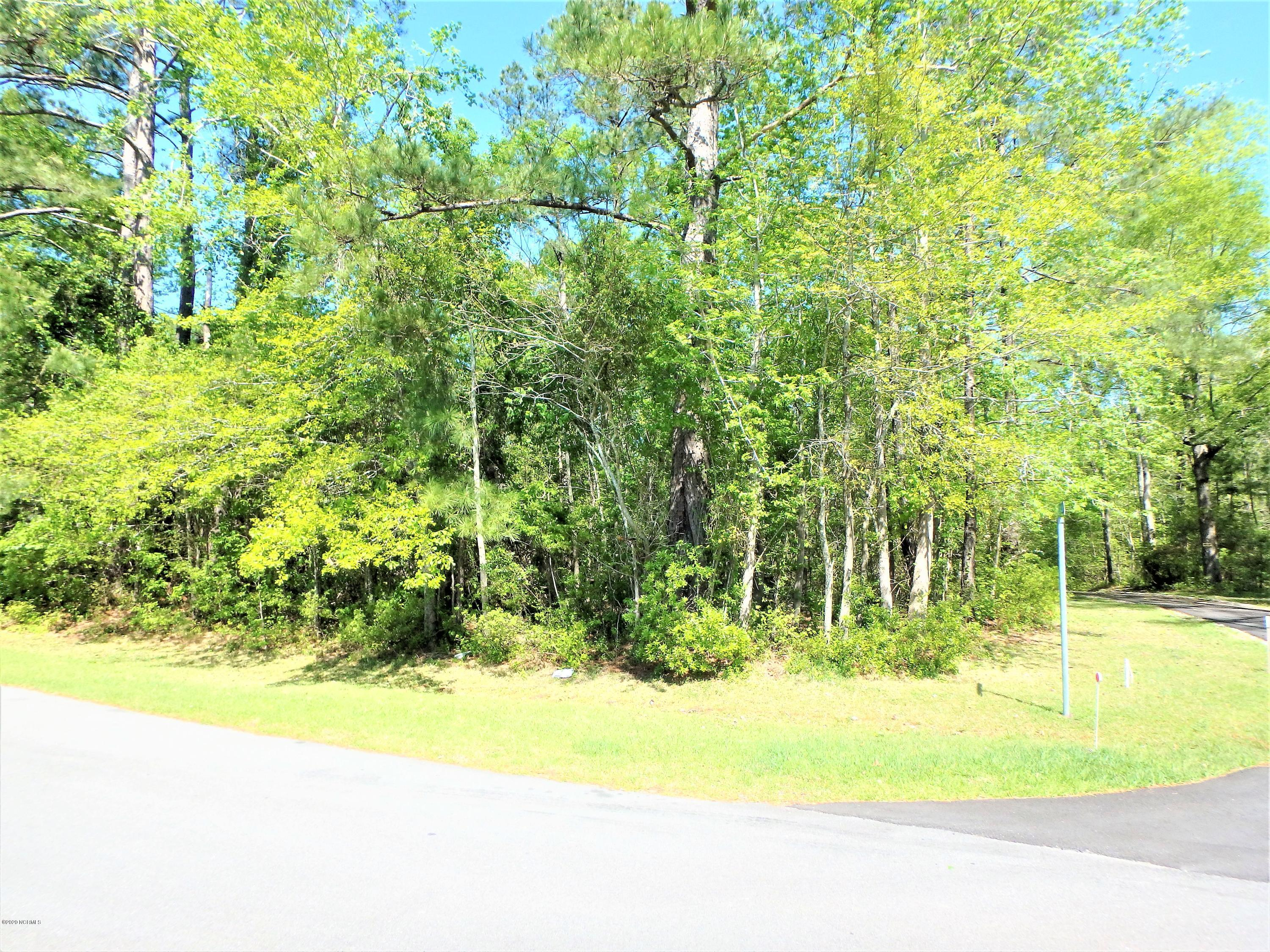 Located in the Amelia Lane subdivision, this .82 acre residential lot is ready to be cleared for your dream home.This corner lot parcel sits high and dry and has great road frontage on Willbarry Rd.