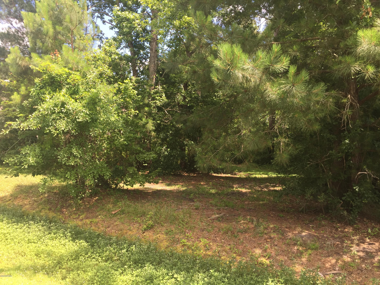 Brunswick Plantation & Golf Resort - MLS Number: 100220579