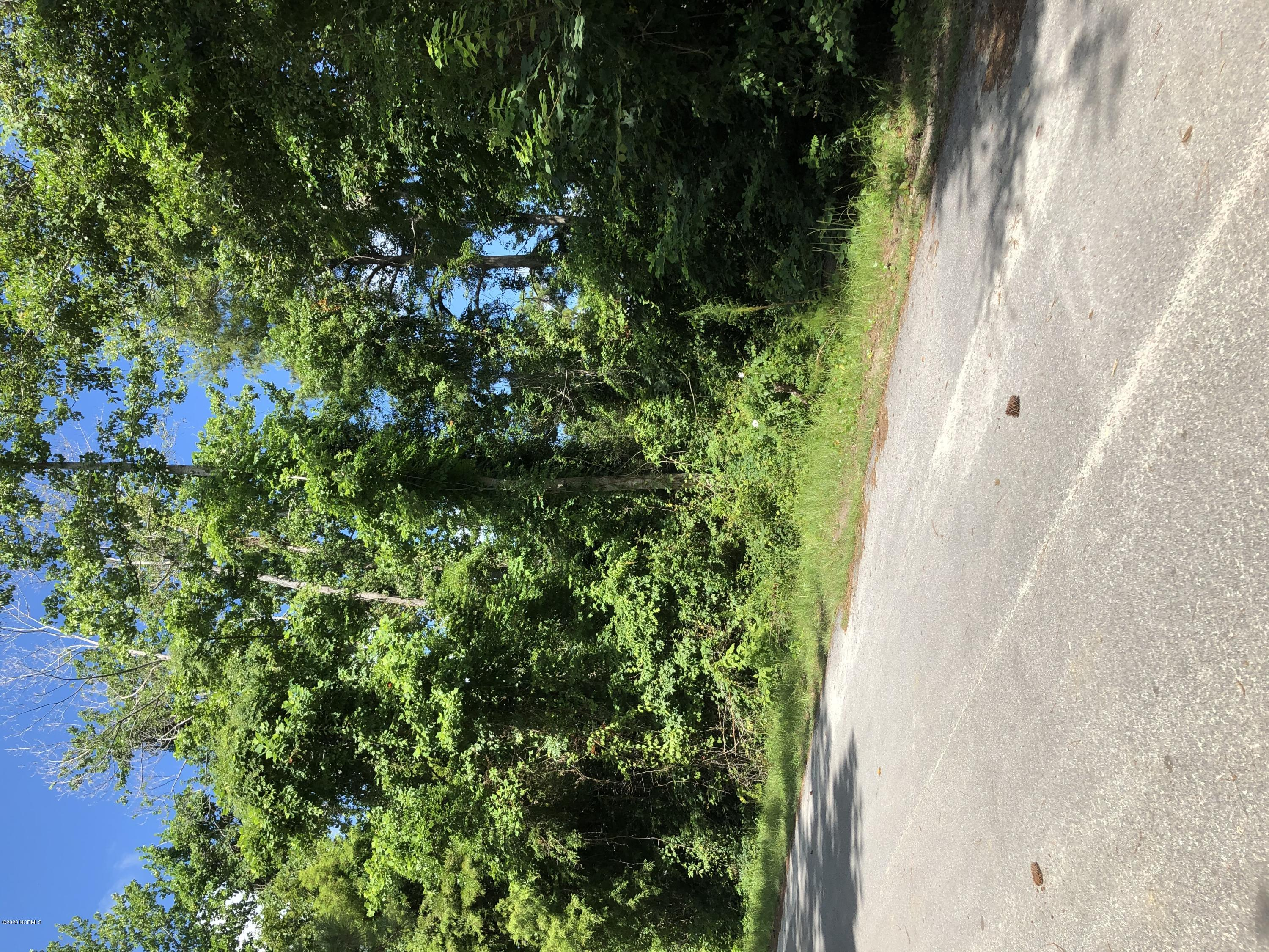 Enjoy the laid back salt life on  3/4 Acre canal lot  fronting New River. Access to Intracoastal Waterway and inlet to the ocean. High lot slopes down to water. State Wildlife Ramp and marina close by. Only minutes to Topsail beaches.