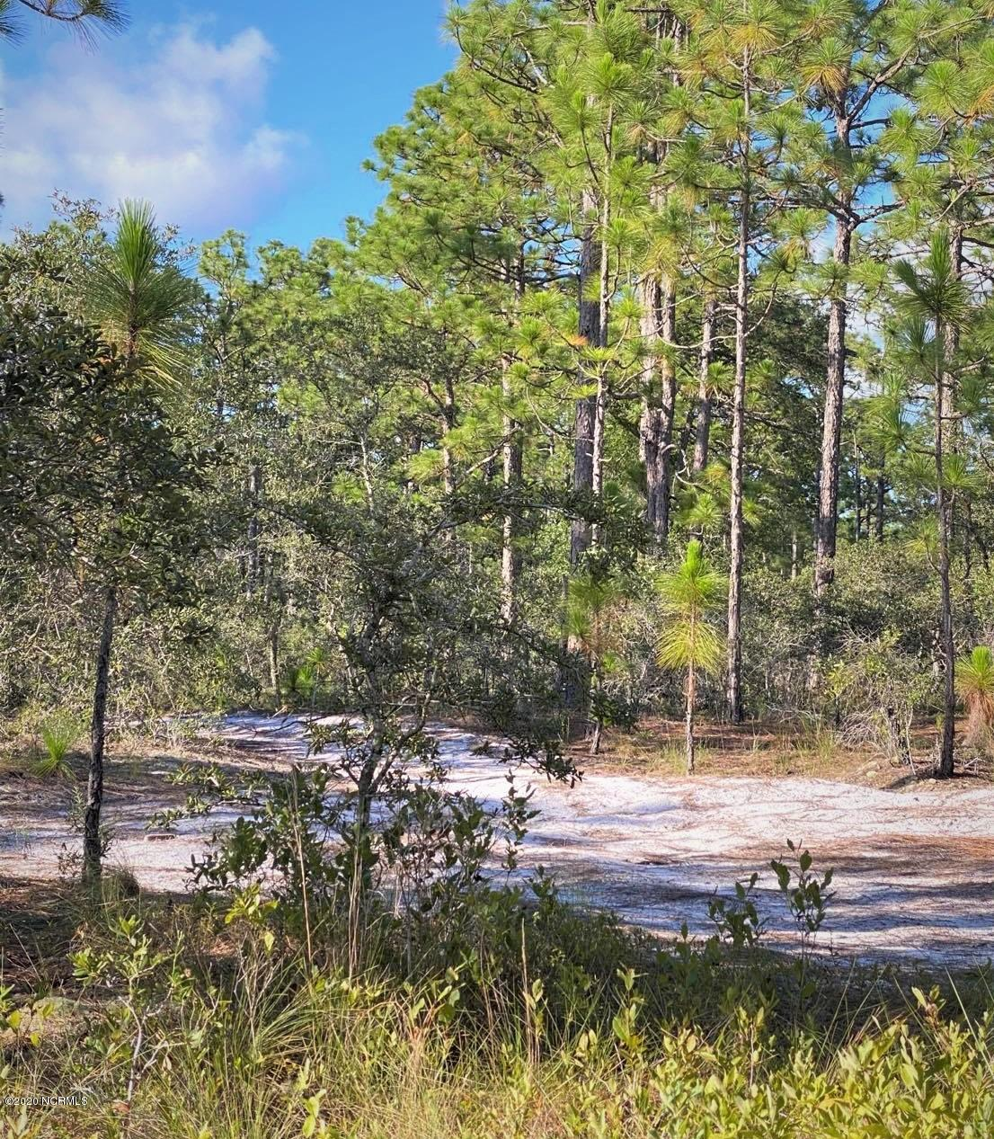 168 Acres Off Old Georgetown Rd Shallotte, NC 28470