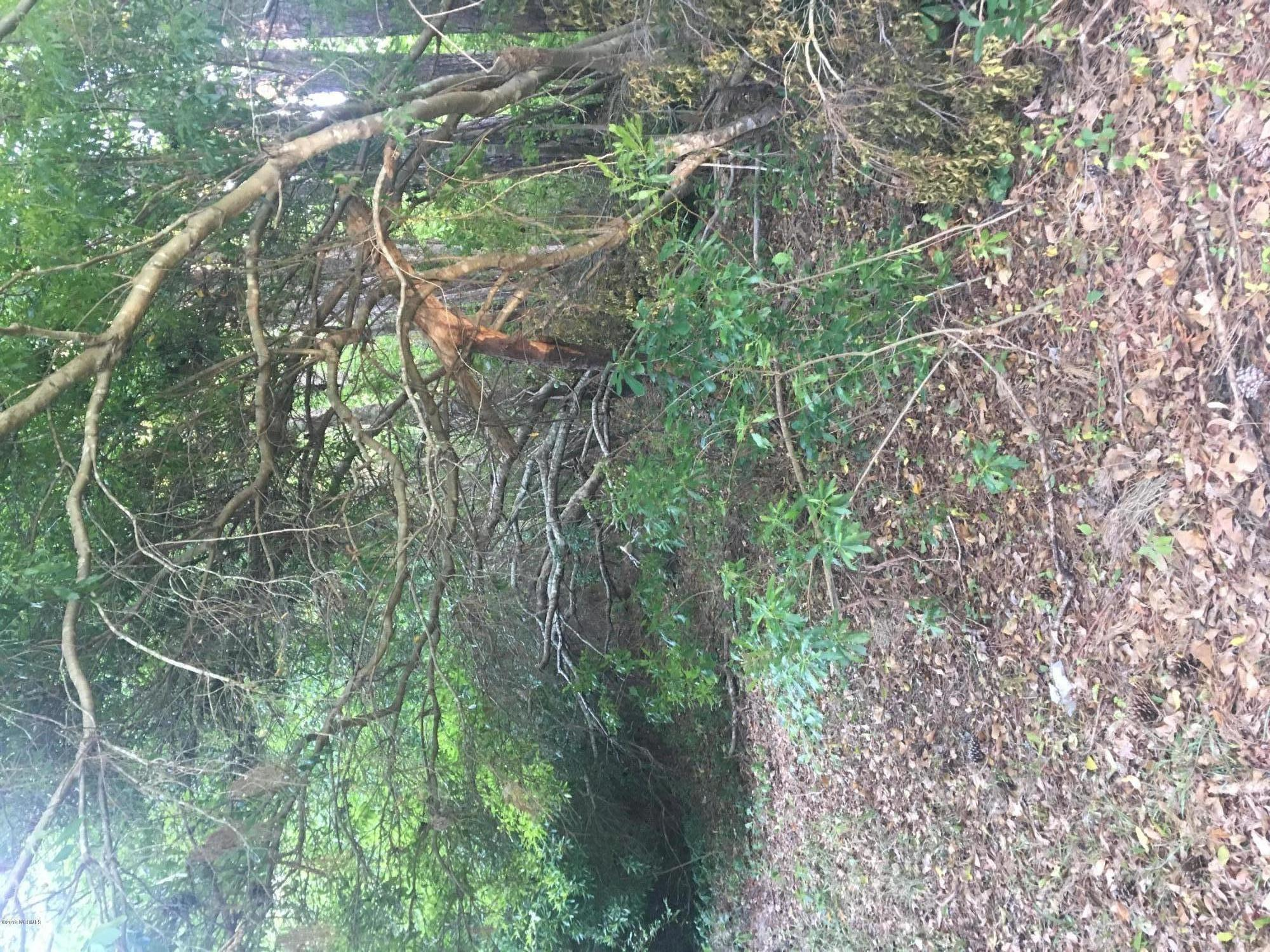 .52 ac Wooded lot. No restrictions to the type of home you put on it. Will Need a septic system for home. Close into the city for shopping, restaurants & a short drive to the beach. .