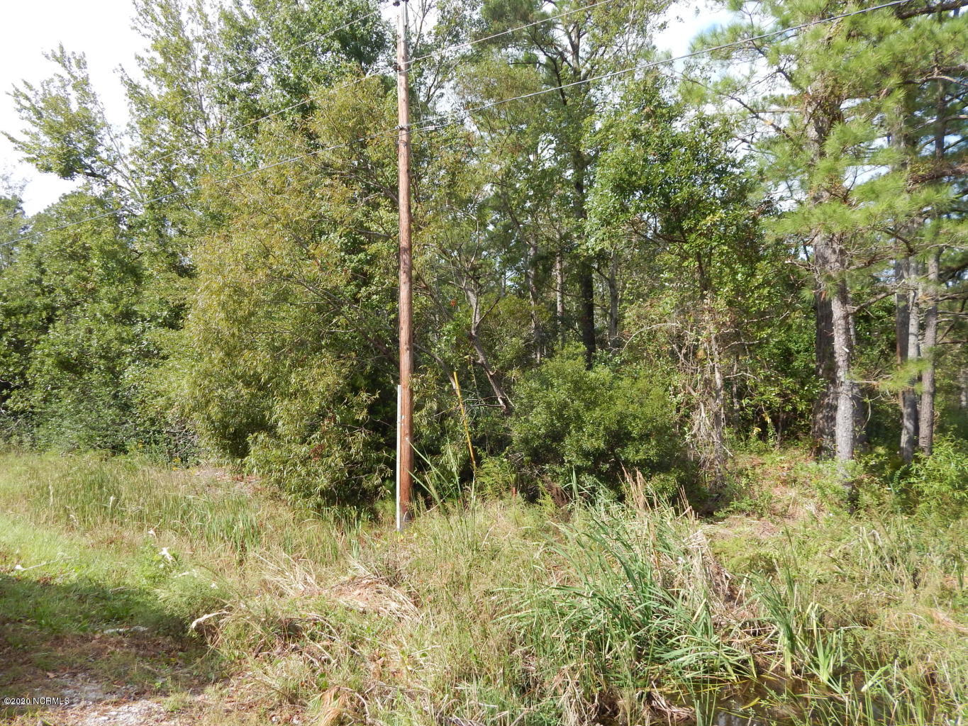 Wooded lot with over 4 acres right off Parkertown Road.