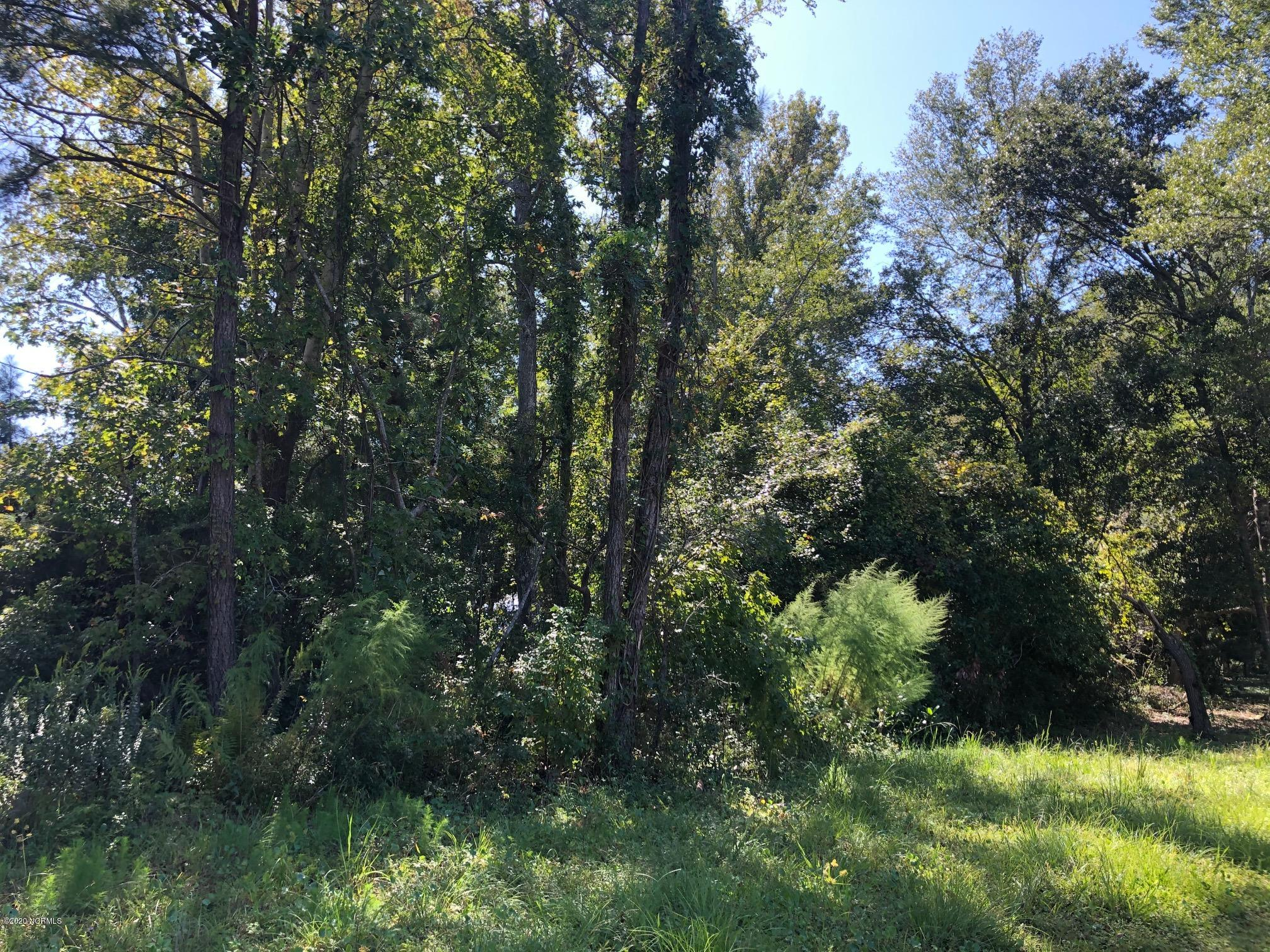 Brunswick Plantation & Golf Resort - MLS Number: 100238686