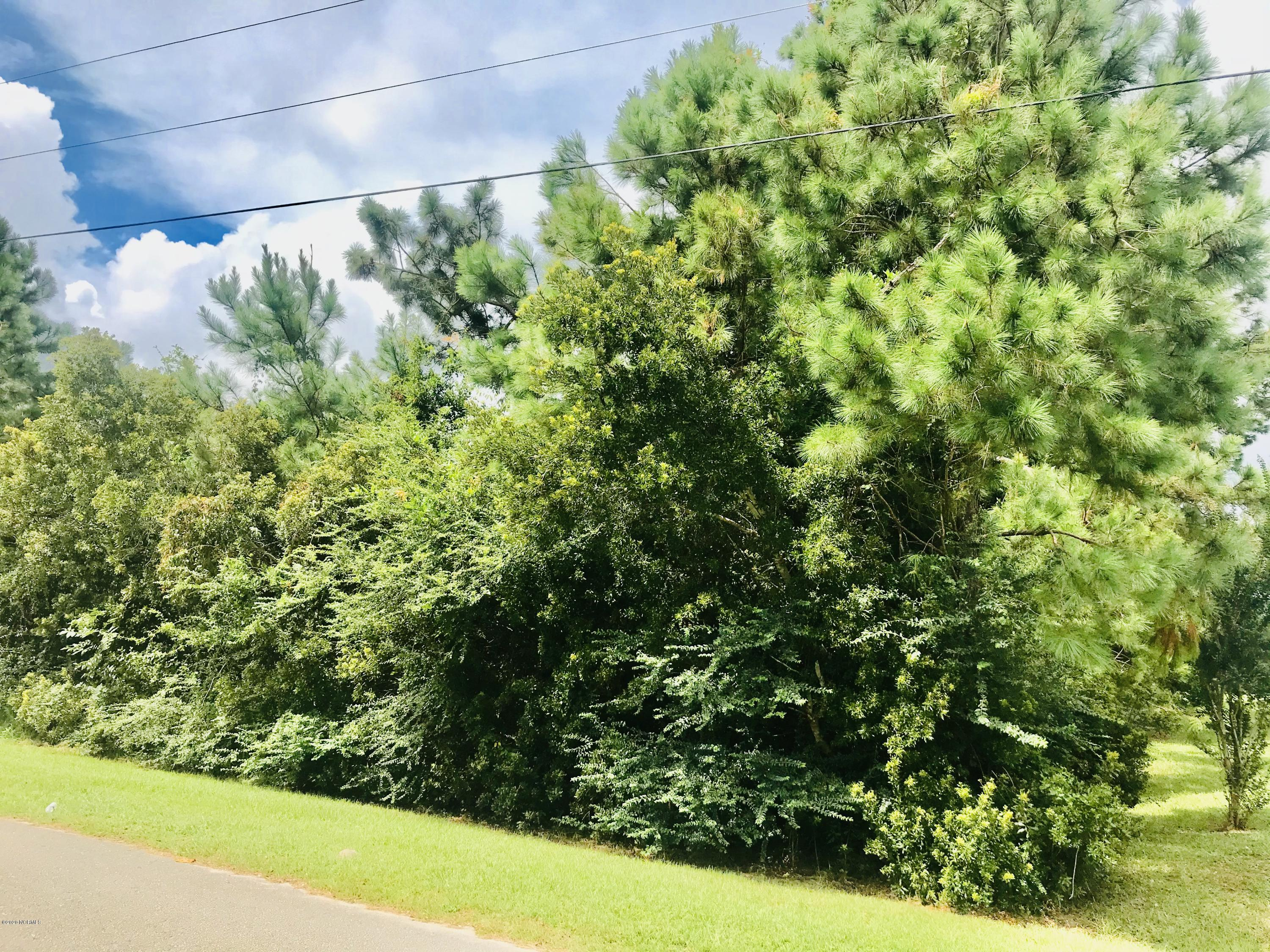 Located minutes from Stone Bay, MCAS and Camp Lejeune, North Topsail Beach, North Shore Country Club, restaurants, entertainment and more.... Whether your just starting the home building process or perhaps looking to build a second home or investment property, this lot is perfect for new construction!!