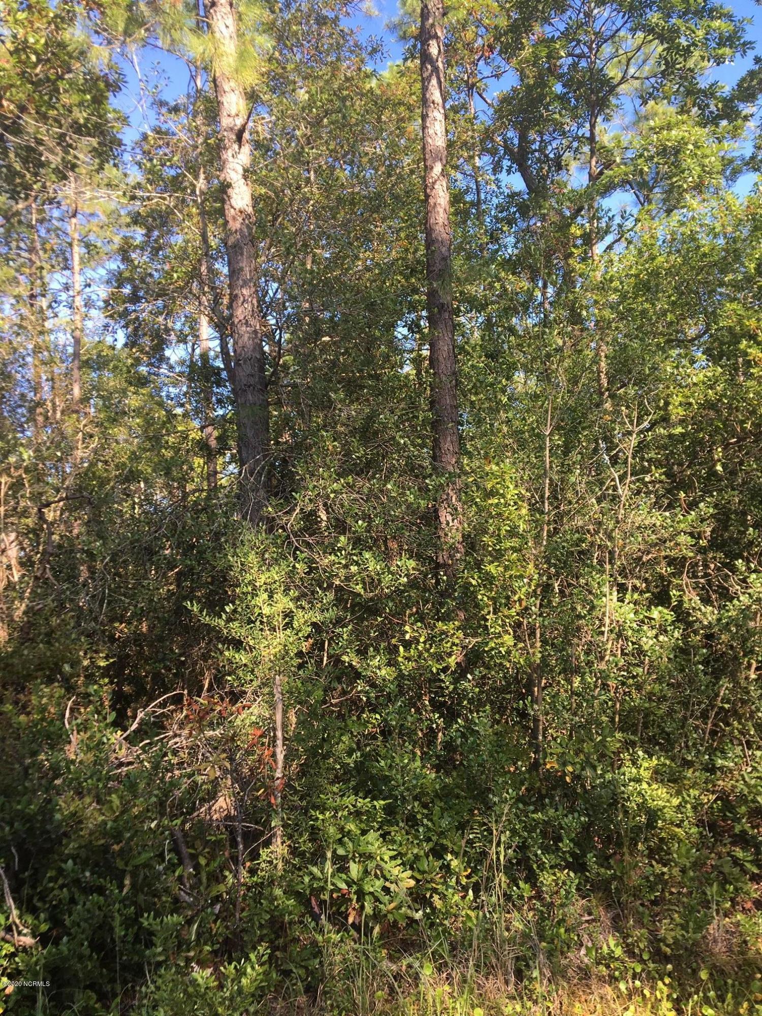 Brunswick Plantation & Golf Resort - MLS Number: 100240321