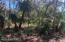 40 L-323 Dowitcher Trail, Bald Head Island, NC 28461