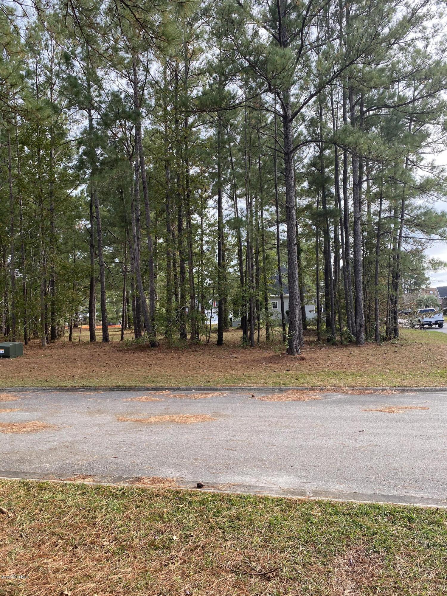Brunswick Plantation & Golf Resort - MLS Number: 100244918