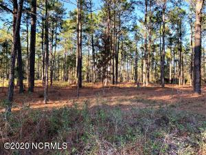 0 Bay Ridge Road, Harrells, NC 28444