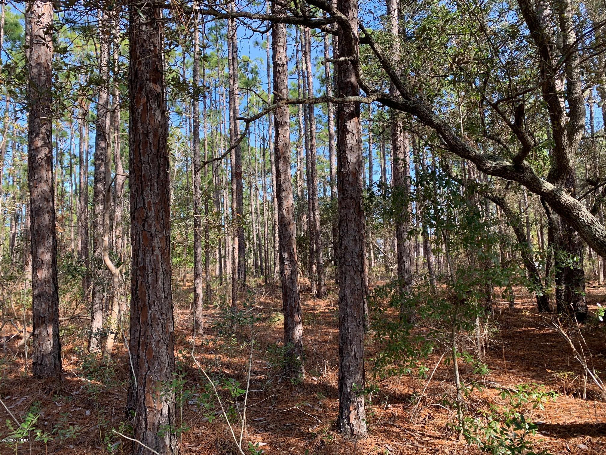 Brunswick Plantation & Golf Resort - MLS Number: 100247673