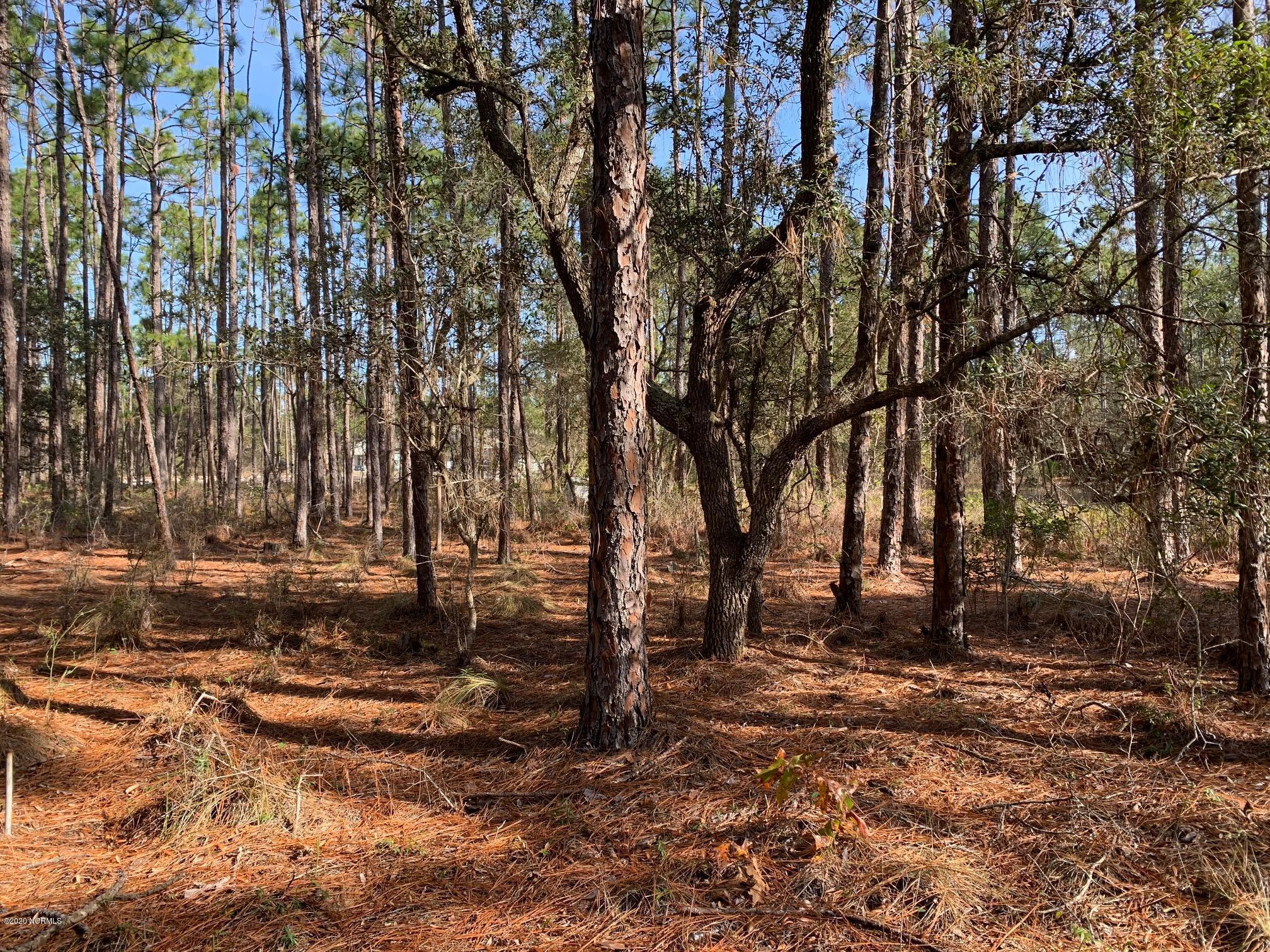 Brunswick Plantation & Golf Resort - MLS Number: 100247678