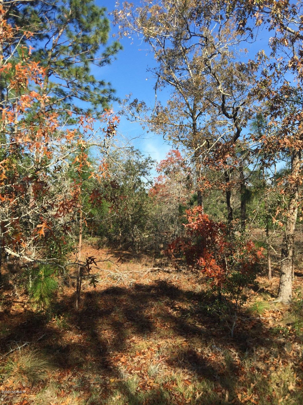 Lot 13 Twin Lakes Drive Boiling Spring Lakes, NC 28461