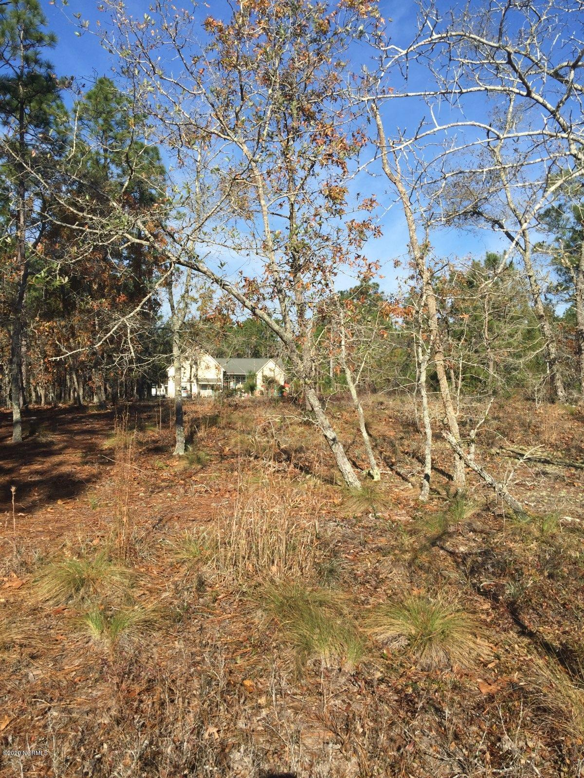 Lot 4 Twin Lakes Dr Boiling Spring Lakes, NC 28461