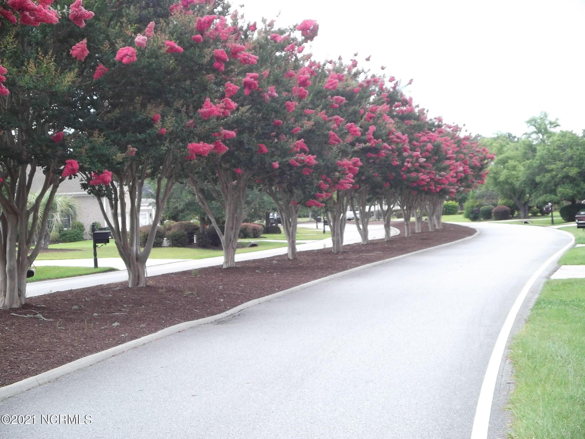 Brunswick Plantation & Golf Resort - MLS Number: 100251412