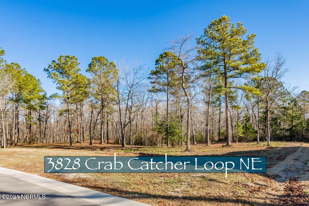 3828 Crab Catcher Loop Leland, NC 28451