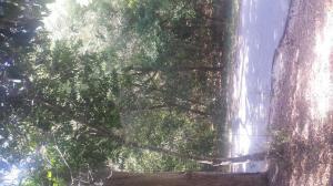 608 Wash Woods Way, Bald Head Island, NC 28461
