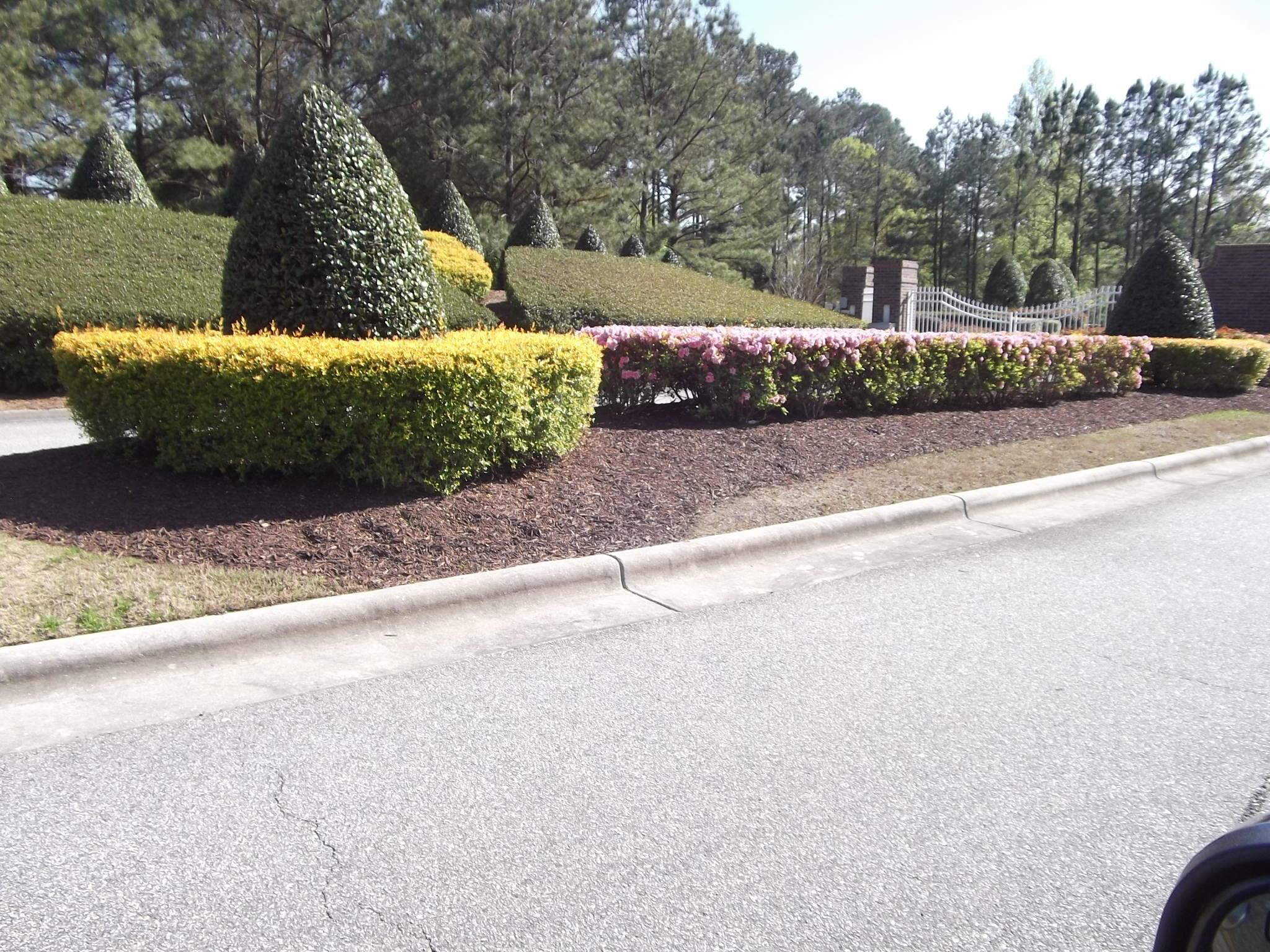 Brunswick Plantation & Golf Resort - MLS Number: 100263516
