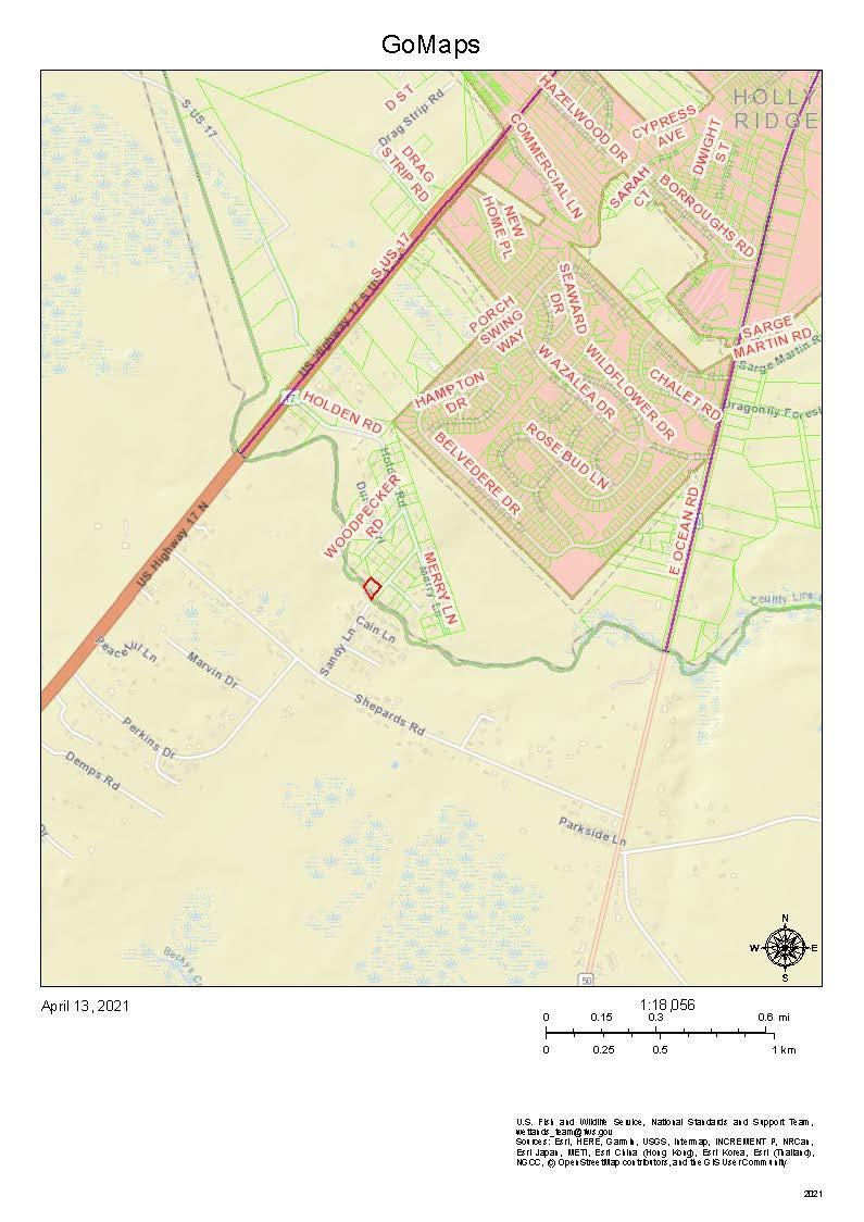 Build or place a manufactured home. If seclusion is your cup of tea, this is your lot! Contiguous to another ten acres that sellers will subdivide. Available acreage in Holly Ridge!