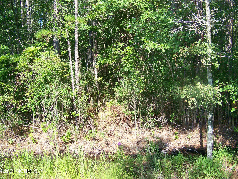 Brunswick Plantation & Golf Resort - MLS Number: 100268370