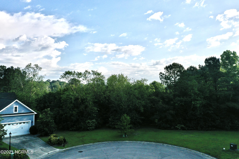 Brunswick Plantation & Golf Resort - MLS Number: 100270333