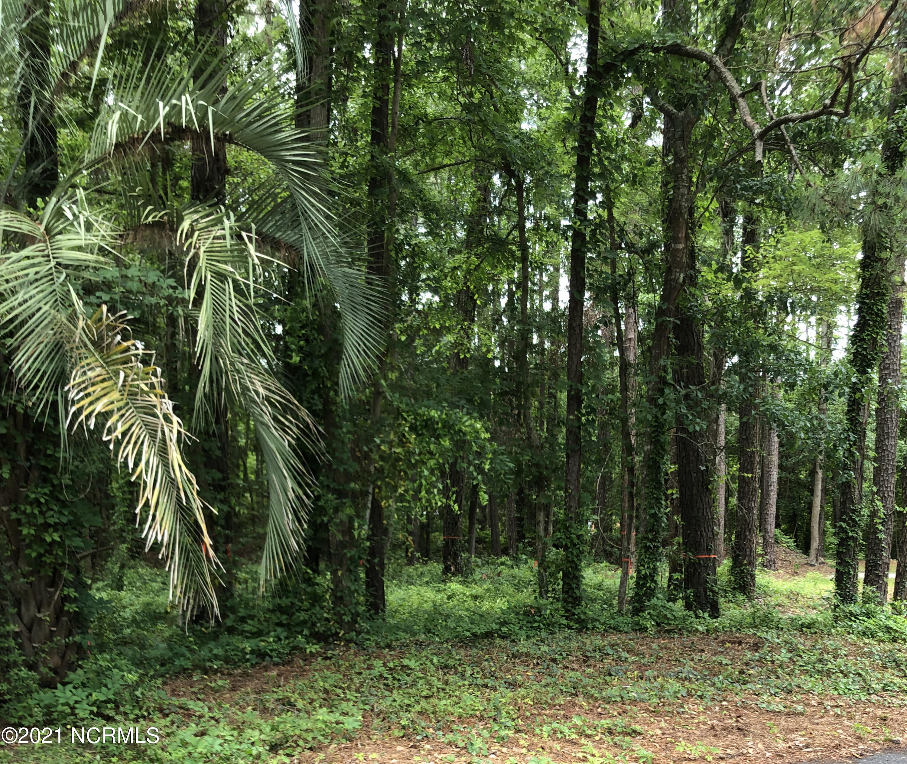 Lovely wooded building lot nestled in the golf community of Carolina Shores. Public water and sewer available. Just minutes or a bike ride from the inviting town of Calabash and its waterway dining, quaint shops, only a short drive to many golf courses (a walk to Carolina Shores golf course), fishing, restaurants. entertainment, and popular Myrtle Beach. Come enjoy the wonders of living on the NC coast.
