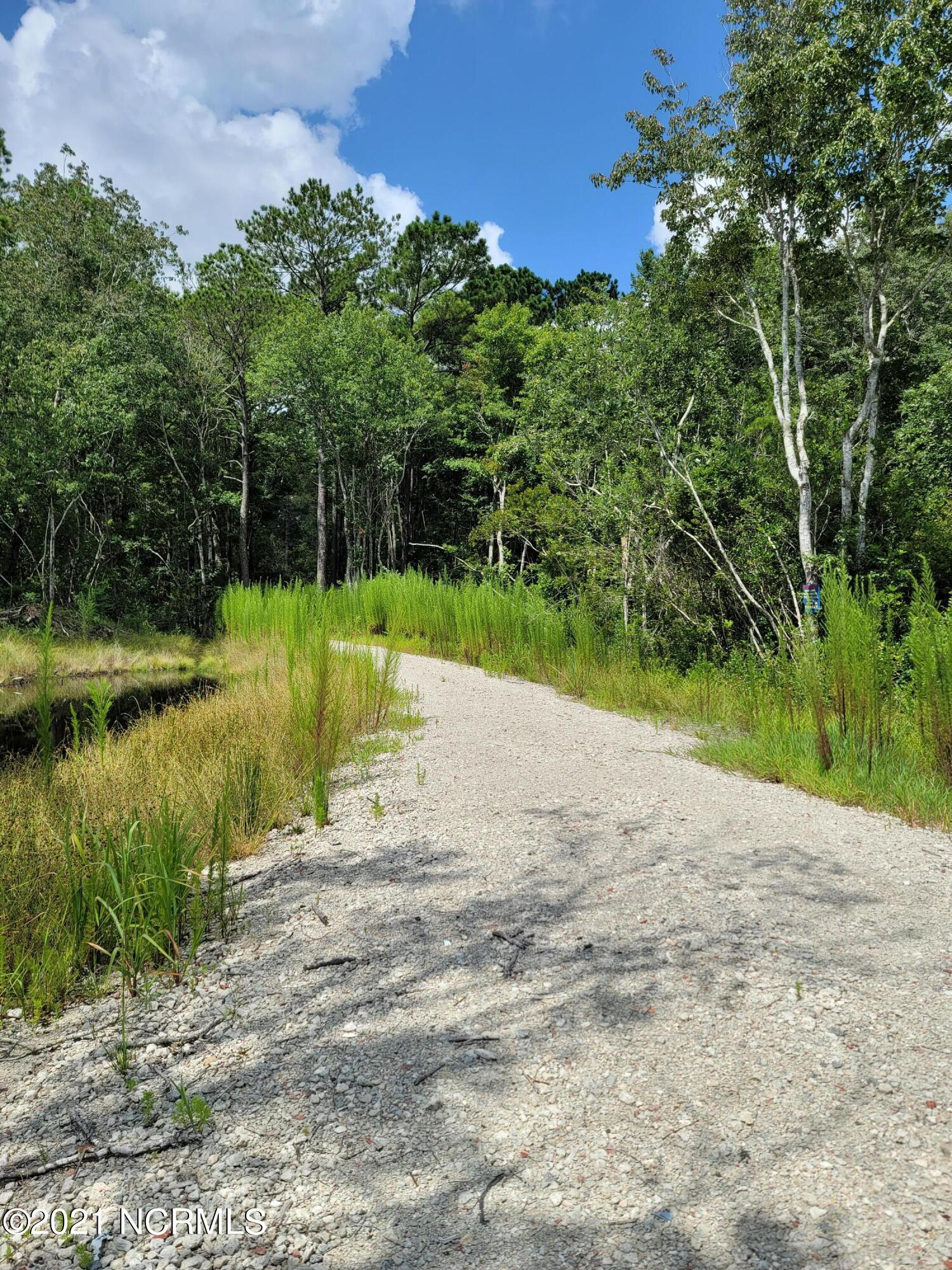 Looking for a lot in the woods? Check out this lot to see if its secluded enough for you! The lot in front and adjoining this one is available also. So you could have a larger lot/acreage! There are some deed restrictions and a preliminary soil tests.
