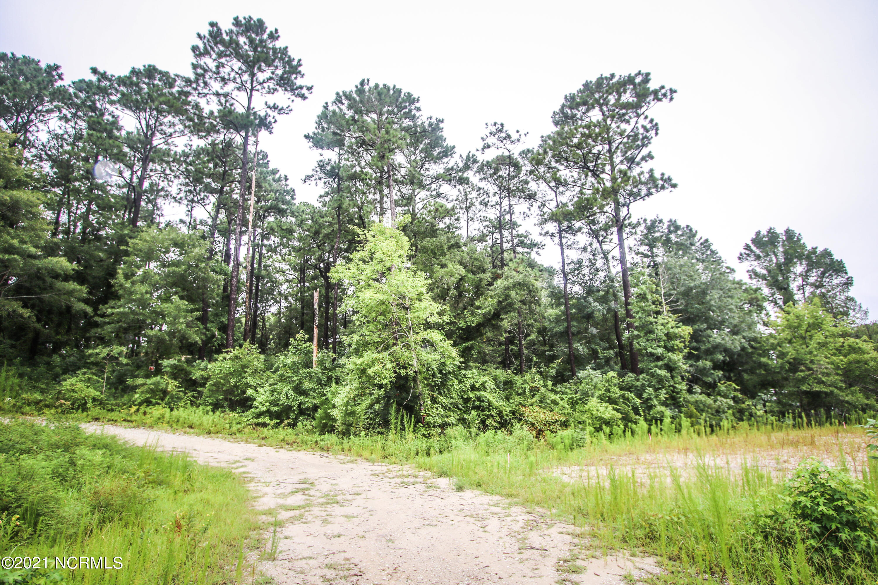 Looking for the perfect place to build your dream home? This piece of property could be the answer!!! Located in Sneads Ferry and close to the beach and all area beaches there is so much this property has to offer!