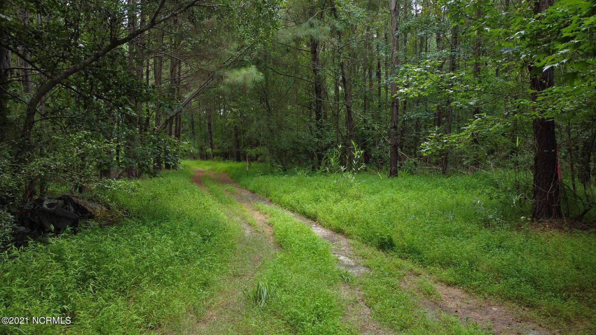 Here's your chance to build your dream home on this private 4.29 acre tract! This property provides ample space for a homestead with lots of room to grow. There's 78 feet of road frontage off Richlands Hwy with a long driveway leading back to the property. Power is already located on the property. The seller has done some clearing and marking of the property lines making it easy to walk the area. Come see this beautiful tract today!