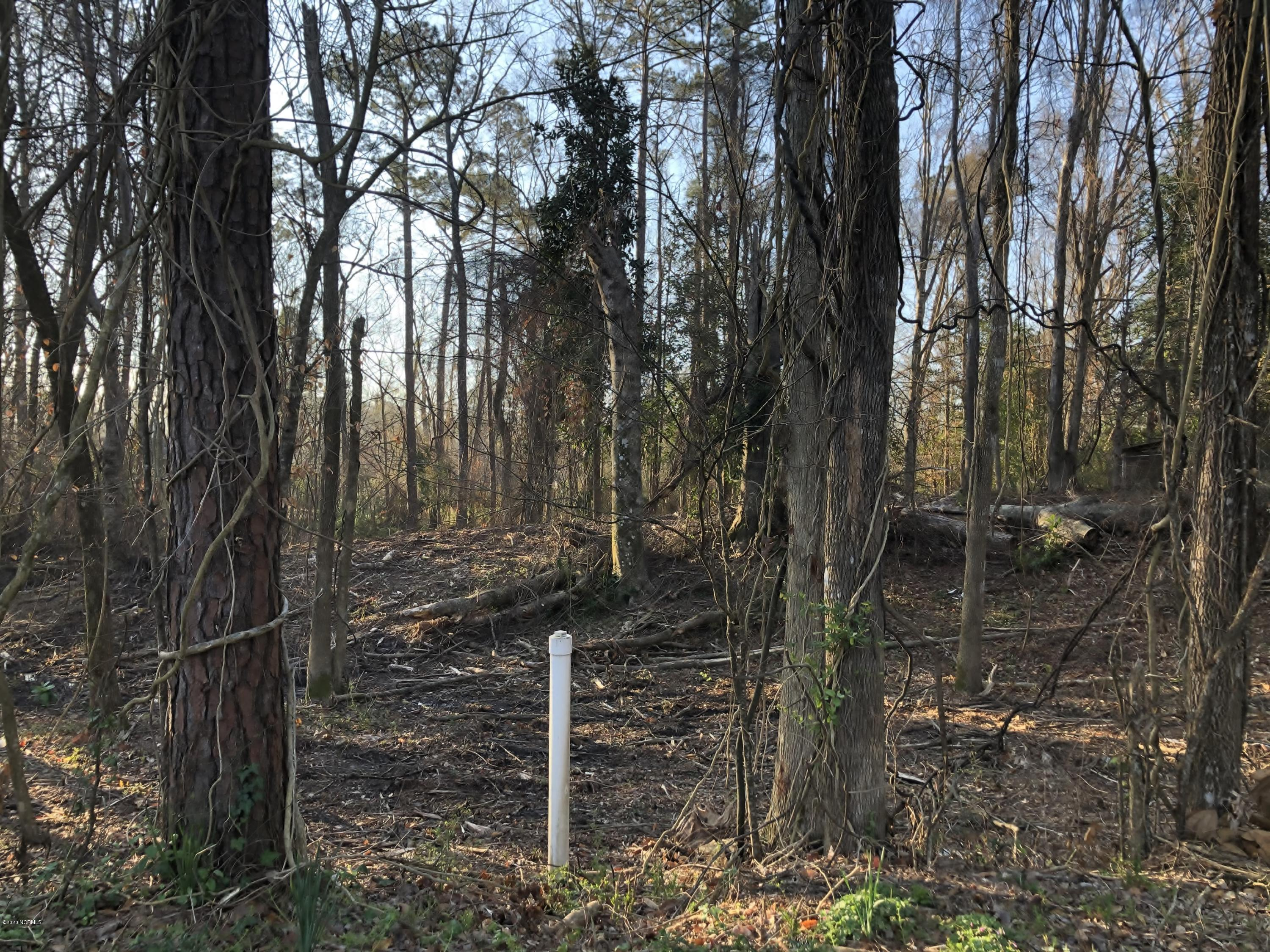 Residential building lot for sale in the established neighborhood of Country Club Acres.  Beautiful neighborhood with mature trees and close to all that Jacksonville has to offer.  Call for more information today on this 1.2 +- acre lot!