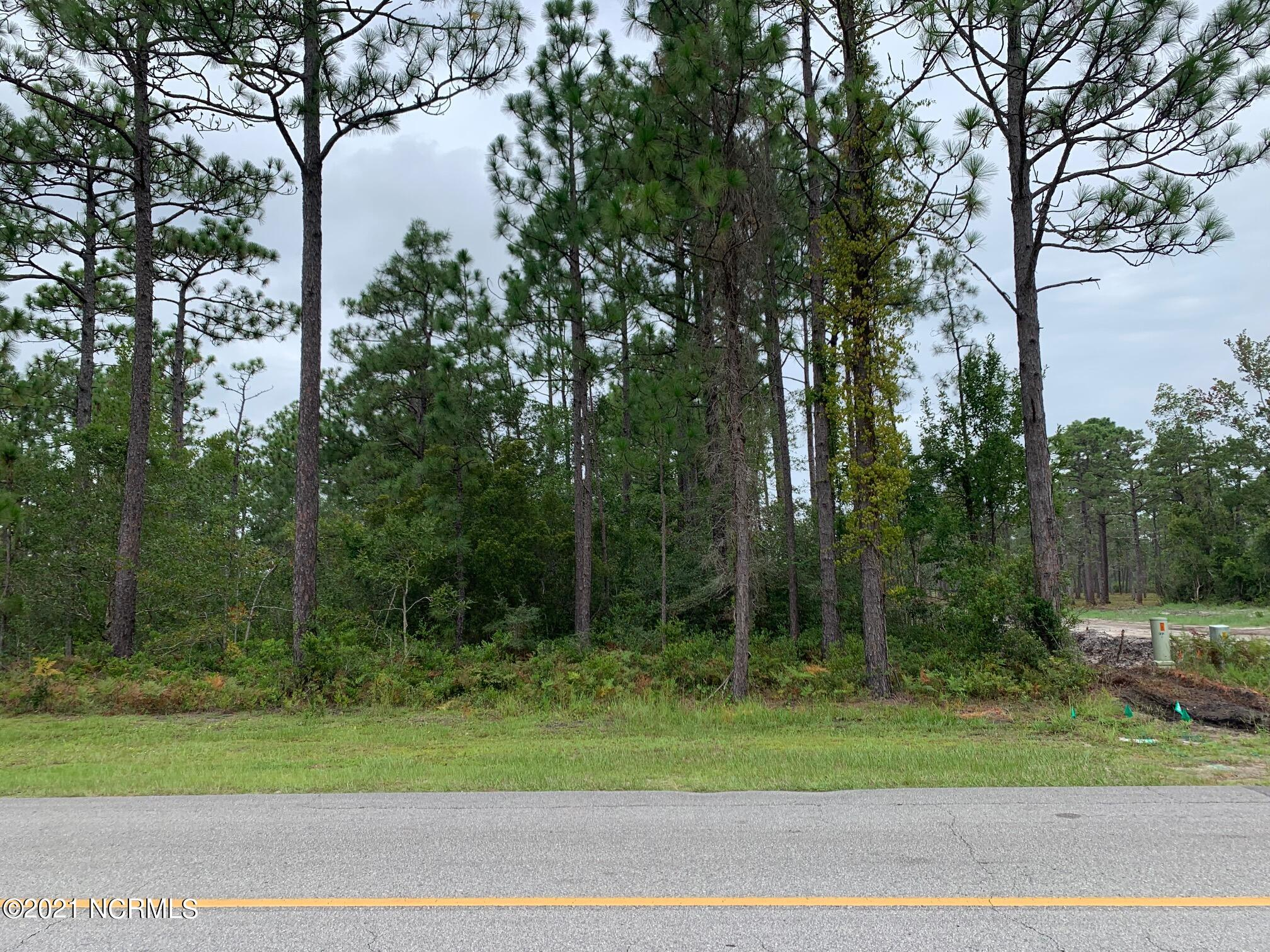 Lot 75 Fifty Lakes Drive Boiling Spring Lakes, NC 28461