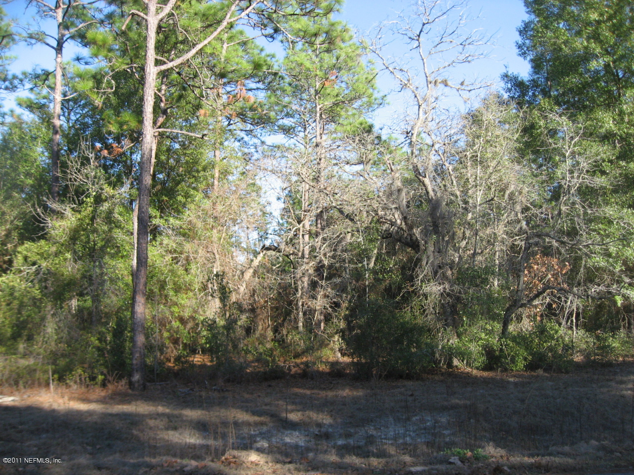 00 ALAMEDA, KEYSTONE HEIGHTS, FLORIDA 32656, ,Vacant land,For sale,ALAMEDA,567643