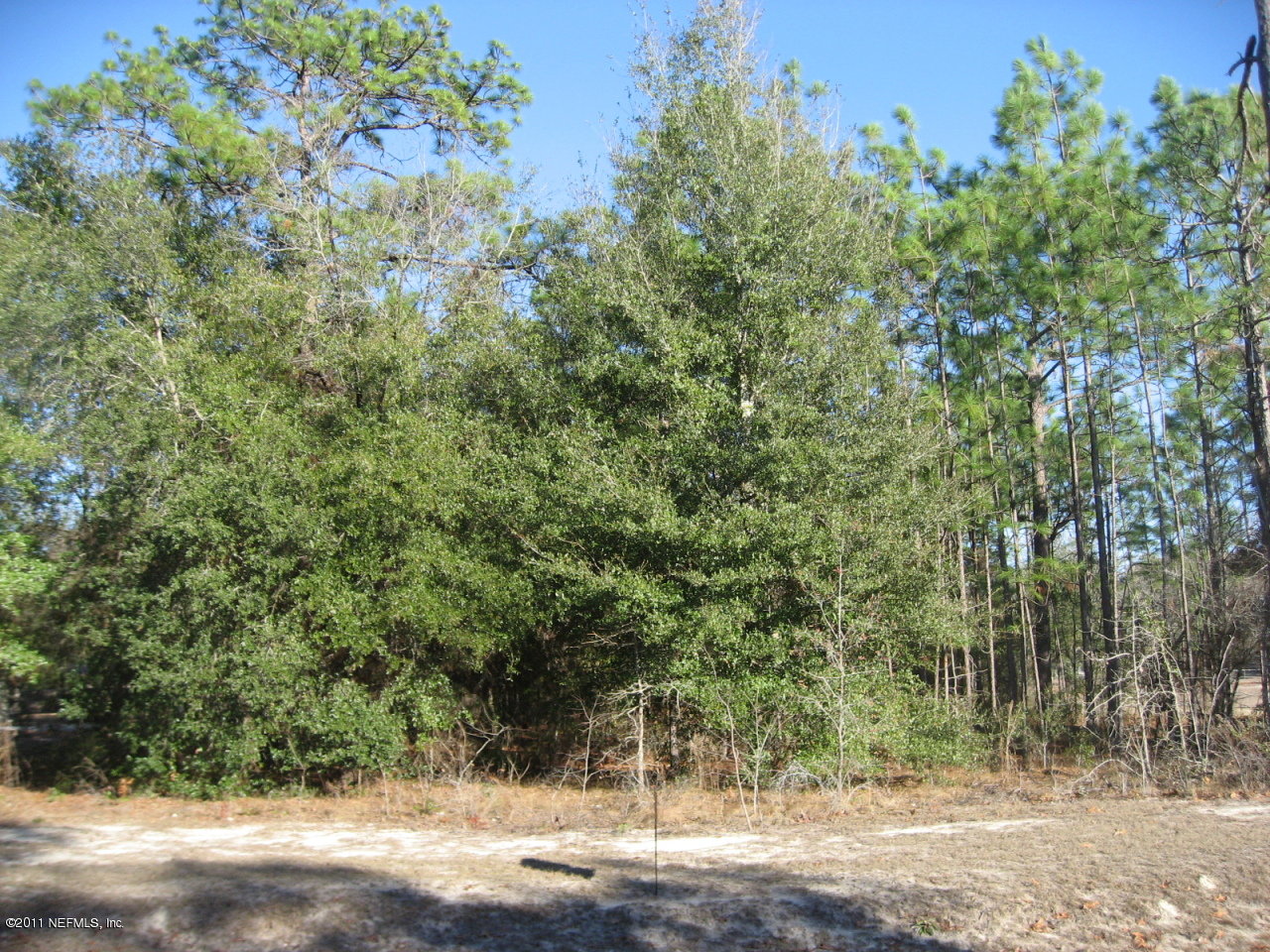 00 ALAMEDA, KEYSTONE HEIGHTS, FLORIDA 32656, ,Vacant land,For sale,ALAMEDA,567603