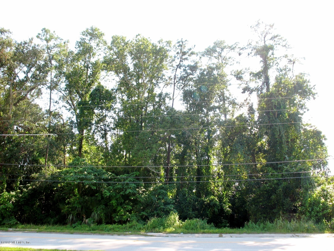 0 ST AUGUSTINE, JACKSONVILLE, FLORIDA 32207, ,Vacant land,For sale,ST AUGUSTINE,636447