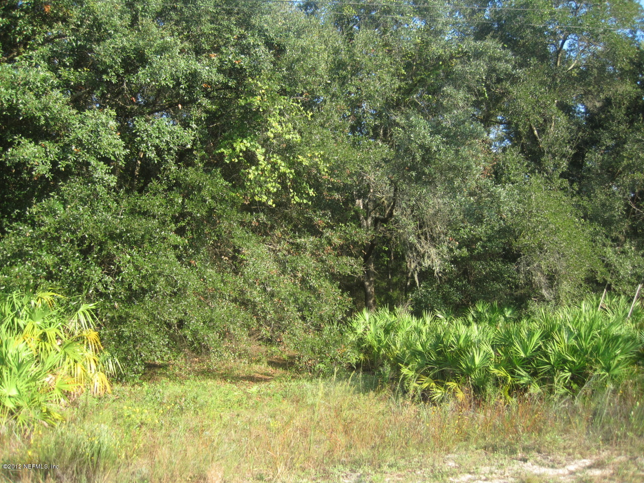 0 silver lake, PALATKA, FLORIDA 32177, ,Vacant land,For sale,silver lake,637436