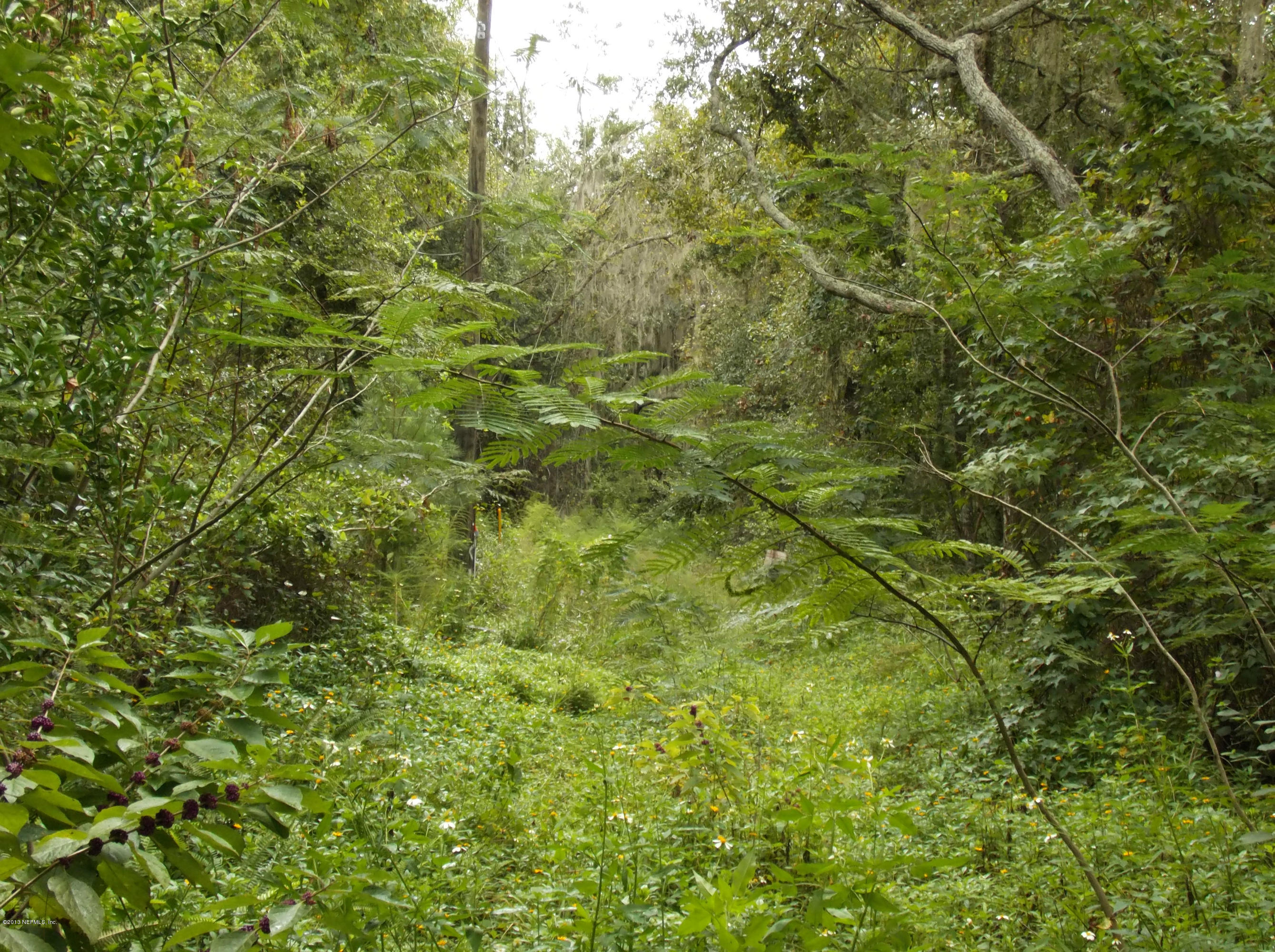 8486 PALMO FISH CAMP, ST AUGUSTINE, FLORIDA 32092, ,Vacant land,For sale,PALMO FISH CAMP,682357