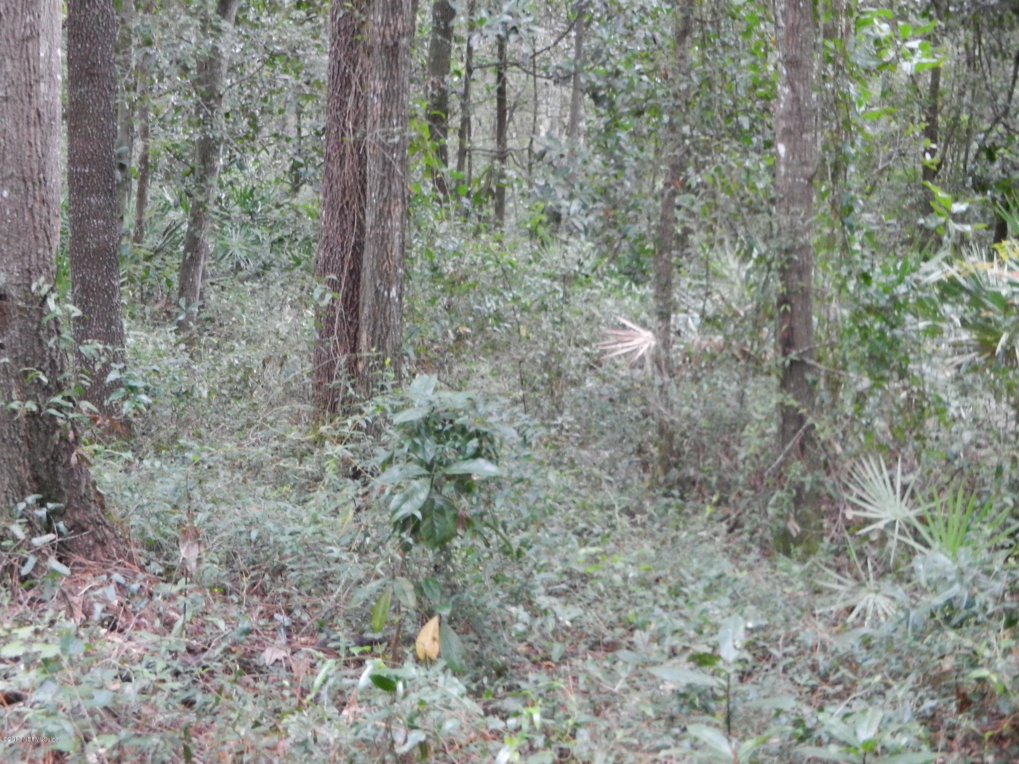 1763 COLONIAL, GREEN COVE SPRINGS, FLORIDA 32043, ,Vacant land,For sale,COLONIAL,690343