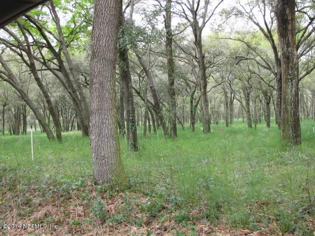 000 KIRKWOOD, POMONA PARK, FLORIDA 32181, ,Vacant land,For sale,KIRKWOOD,710535