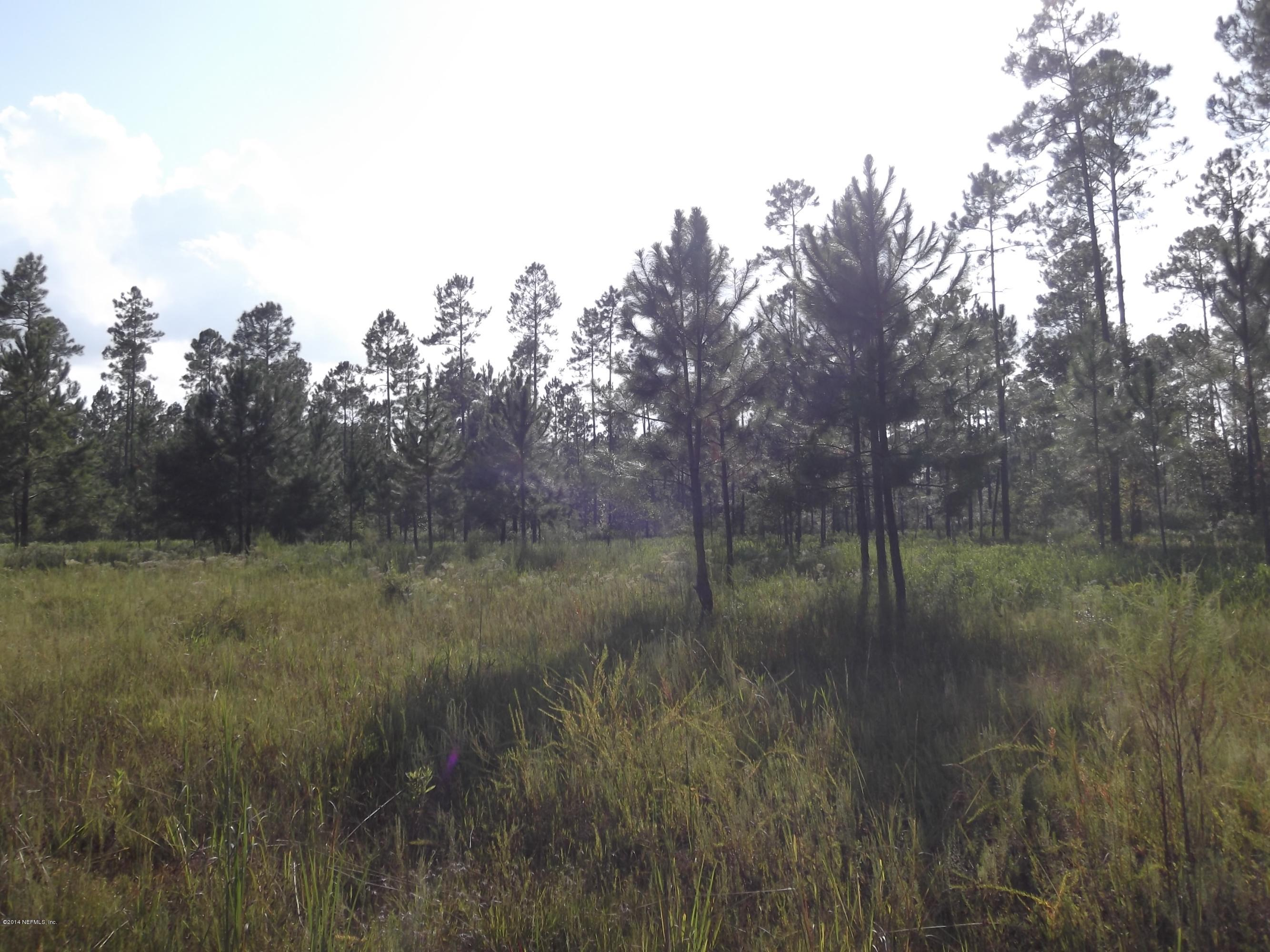 33145 WIREGRASS, CALLAHAN, FLORIDA 32011, ,Vacant land,For sale,WIREGRASS,737487