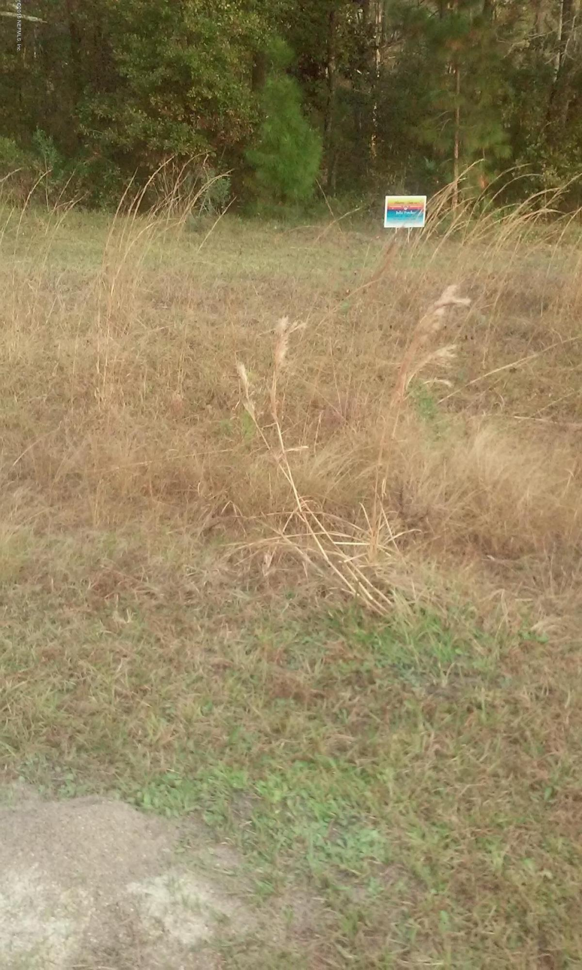 12345 COMMANDER ROW, LAKE CITY, FLORIDA 32025, ,Vacant land,For sale,COMMANDER ROW,748328